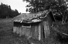 Still standing (bromanaerjag) Tags: shed sörmland sweden decay wooden house trees grass roof broken