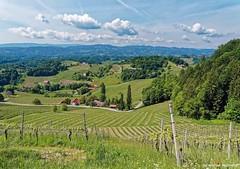 South Steyria Wine Route (AT) (Mike Reichardt) Tags: steiermark steyria südsteirischeweinstrasse southstyriawineroute travel reisen austria österreich landscape landschaft natur nature gebirge wineyards weinstrasse weinberge