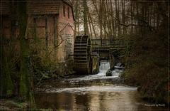 Holm - Holmer Wassermühle (2) (Pana53 - the photographer) Tags: photographedbypana53 pana53 wassermühle watermill holm niedersachsen seeve wasser mühlenrad mühlenstrase nikon nikond810