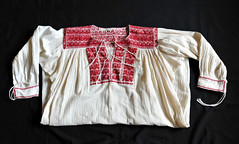 Zapotec Blouse Oaxaca Mexico (Teyacapan) Tags: sanvicentecoatlan mexico blusa blouses ropa embroidery clothing zapoteca oaxacan