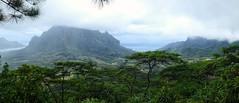Mountains of Moorea