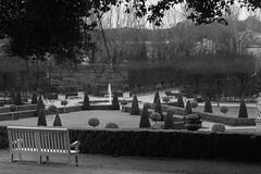 HBM from the Royal Hospital Kilmainham (Wendy:) Tags: rhk bench seat topiary hbm