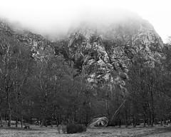 Lost in the clouds (lebre.jaime) Tags: landscape nature clouds hill rock trees digital nikon d600 voigtländer nokton 58f14sliis nokton5814sliis bw blackwhite noiretblanc nb pb pretobranco ptbw affinity affinityphoto