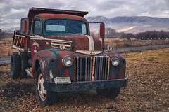 Fading Ford II (PNW-Photography) Tags: ford truck trucks abandoned rusty dusty old dust rust derelict faded fading fade farmer farm country rural naches washington easternwashington auto automobile automotive pickup fall autumn