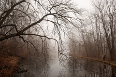 At Spring Lakes, Bellbrook, OH (Randy Durrum) Tags: spring bellbrook ohio m50 canon fog pond tree branch branches dayton photography group reflection reflections reflecting leaves fallen mist walker durrum lakes lake