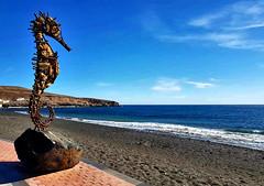 Skulptur am Strand von  Tarajalejo auf Fuerteventura (Wolfgang.W. ) Tags: seepferdchen sculpture skulptue tarajalejo fuerteventura kanaren kanarischeinseln canaryislands canarias playa bech strand küste coast atlantic atlantik atlantico