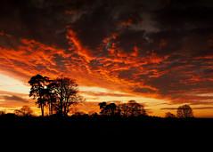 Photo of Winter Sunset, Shropshire