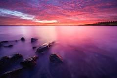 Pink Power (Ellen van den Doel) Tags: sky nature nederland netherlands zonsondergang lucht outdoor 2019 natuur sunset december landschap landscape