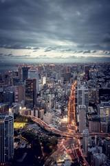 Tokyo Tower View (Felix Vila) Tags: tower tokyotower sky skyline tokyo japan city observatory road