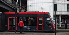 Lijn 9 naar Vrederust (Gerard Stolk (au carnaval )) Tags: thehague denhaag lahaye haag tram trams streetcar rt9 lijn9 avenio htm