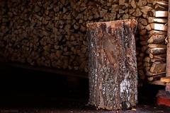 Chopping Block (felix200SX) Tags: choppingblock wood birch firewood outside canon 70d sigma70200mmf28dgoshsm storage