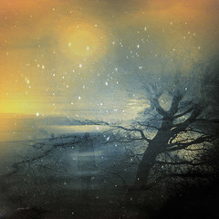 #A Magical Day.... (graceindirain) Tags: fantasy dream love music journey snow light tree silhouette hope texture textured graceindirain poi stupendi lavori non finiscono mai di stupire