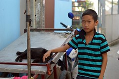 boy with cat (the foreign photographer - ฝรั่งถ่) Tags: oct172015nikon boy child black cat cart khlong lard phrao portraits bangkhen bangkok thailand nikon d3200