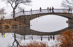Fog and reflection (matthew:D) Tags: dogs landscape bridge nature people running walking massachusetts fog fall background eastcoast water trees adults urban child ripple color crossing foggy boston dog parks unitedstates reflection weekend green