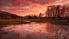 Wolfscote Dale (Rob Bates Photography) Tags: peakdistrict sunset visitpeakdistrict derbyshire landscape landscapephotography peakdistrictphotography buxton reflections mirror orange trees silhouette englishcountryside sky golden pink kasefilters canon canon5dsr