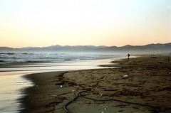 Uomo e il mare (michele.palombi) Tags: negativocolore colortec kodakektar100 man tuscany mediterraneansea versilia analogicshot natura mare uomo