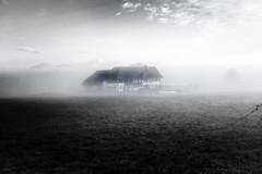 Hohentengen (Oliver Matyo) Tags: blackandwhitephotography blackandwhite fujifilmx100f fujixseries olivermatyo