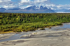 If Memories Are a Precious Cargo, I'm Heading out to Experience More Outside...With My Camera :-)  (Denali State & National Parks) (thor_mark ) Tags: alaska2019 alaskarange alaskayukonranges azimuth306 blueskies bluesskieswithclouds braidedchannel braidedriver capturenx2edited chulitnariver cloudsaroundmountainpeaks cloudsaroundmountains colorefexpro day2 denali denalihiddeninclouds denalinationalparkpreserve denalinationalparkandpreserve denalistatepark denaliviewpointsouth evergreentrees evergreens hillsideoftrees imagecapturewitharsenal landscape lookingnw moosestooth mountdickey mounthunter mounthuntington mountsilverthorne mountstevens mountainpeak mountains mountainsindistance mountainsoffindistance mountainside nature nikond800e outside partlycloudy portfolio project365 river rollinghillsides southbuttress sunny travel trees westcentralalaskarange witharsenal alaska unitedstates