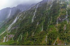 Every teardrop is a waterfall DSC_4728 (BlueberryAsh) Tags: newzealand mountains waterfalls water rain weather milfordsound fiordlandnationalpark green cloudsstormssunsetssunrises clouds fog cascade nikond750 nikon24120
