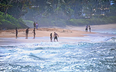 Laniakea Beach (ashockenberry) Tags: ashleyhockenberryphotography coast sun sand surf beach nice swimming beautiful evening waters waves travel destination tropical exotic people oahu laniakea north shore hawaii