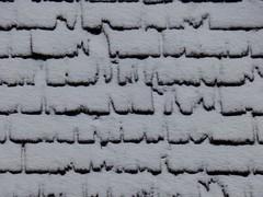 EEG or something else ? 😊 (ursula.valtiner) Tags: elektroenzephalografie eeg schnee snow dach roof see lake alpensee alpinelake erlaufsee lakeerlauf steiermark styria austria autriche österreich