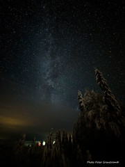 Galaxy! (petergranström) Tags: approved galaxy vintergatan trees träd firs stars stjärnor light ljus snow snö