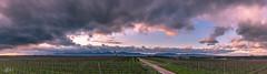 W.W.W (kla.rusch) Tags: deutschland germany rheinlandpfalz pfalz palatinate klarusch klaus ruschmaritsch landschaft landscape natur weinberge weinlandschaft sonnenuntergang sunset rutschibild sony alpha7 fe 2470 f28 gm wolken clouds