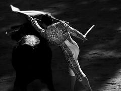 light/shadow (aficion2012) Tags: saintmartindecrau saint martin de crau provence corrida bullfight bull toro tauromachie tauromaquia taureau francia france monochrome bw blackwhite torero matador dolores aguirre doloresaguirreybarra rafaelillo 2014 shadow muleta pasedepecho espada