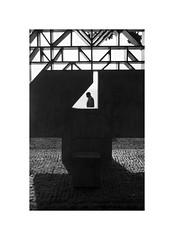 Controluce bermeano (oiZox) Tags: bw blanconegro blackwhite bnw blackandwhite bn black bermeo bizkaia euskadi euskalherria vizcaya viaggiare bnwphotography bnwphoto bnwdemands monochrome mono monocromatico streetphotagraphy street streetphotography streetphoto streetohotography streetart streetphotographers streetstyle minimalistic minimalism sculpture shadow silhouette spain controluce