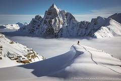 Skiing the North (David Swindler (ActionPhotoTours.com)) Tags: canada canadianrockies snow fog peaks ski skier skiing winter