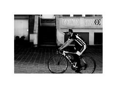 • numbers • zahlen • getallen • ( 1 1 8  ) (japanese forms) Tags: ©japaneseforms2019 日本フォーム bw bicicleta bicicletta biciclette bicycle bike blackwhite blancoynegro cycle cyklar fahrräder fiets monochrome schwarzweis vlaanderen zwartwit
