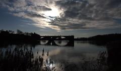 A contre pont (chriskatsie) Tags: avignon pont puente bridge pape pope vaucluse provence france river riviere rio rhone rhône