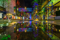 Reflection - Wembley Park, London, UK (davidgutierrez.co.uk) Tags: london photography davidgutierrezphotography city art architecture nikond810 nikon urban travel color night blue photographer tokyo paris bilbao hongkong uk christmas person people bridge londonphotographer twilight bluehour colors colour colours colourful vibrant england unitedkingdom 伦敦 londyn ロンドン 런던 лондон londres londra europe beautiful cityscape davidgutierrez capital structure britain greatbritain ultrawideangle afsnikkor1424mmf28ged 1424mm d810 arts landmark attraction historic iconic icon touristattraction street streetphotography 倫敦 shopping xmas wembleypark christmaslights winterfest christmastree reflection