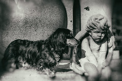 Tell me your troubles... (* Gemini-6 * (on&off)) Tags: blackandwhite dog monochrome statue angel bokeh pet face cemetery animal vintage grunge dachshund mausoleum distressed hss