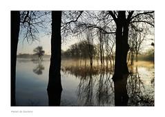Ce matin au lever du jour (Bruno-photos2013) Tags: marais maraisdegoulaine eau water loireatlantique paysageligérien paysdeloire bretagne reflets reflexion contrejour contraste arbres
