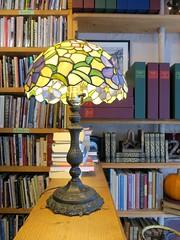 Bibliotherapy (ETFoster) Tags: novel idea bookstore lincoln nebraska books eric foster