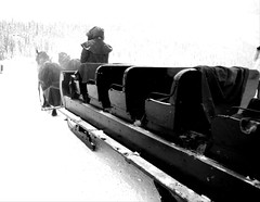 Lake Louise Banff Parkway Canada (Mr. Happy Face - Peace :)) Tags: canada chateau fairmount hotel lakelouise winter 25years outdoors hww sleigh ride art2019 flickrfriends love interesting activities albertabound banff cans2s black white bw