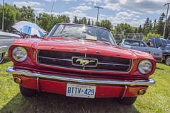 1965 Ford Mustang (Racquel Heron) Tags: cars car carshow red classic classiccar ford mustang vintage vehicle vehicles stouffville ontario canada