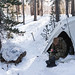 A Sailor trains in the Mountain Medicine, Mountain Warfare Training Center (MWTC) in Bridgeport, Calif.