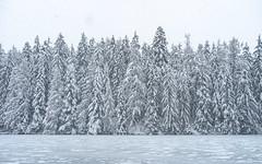 SnowIng in Crans Montana