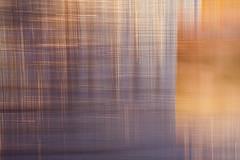 MORNING WEAVE (Deborah Hughes Photography) Tags: intentionalcameramovement incameraeffects intimatenature intimatelandscapes abstractnature abstract abstractphotography impressionism impressionistphotography