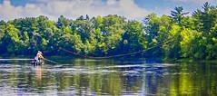 Fly Fishing For Bass:  Long Cast (J Henry G) Tags: flyfishing flyrodcasting flycasting rivers bassfishing fishing johnhenrygremmer