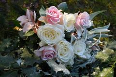 DSC_5448 (griecocathy) Tags: bouquet macro fleur feuille houx lys rose neige boutons végétations blanc jaune vert or rouge