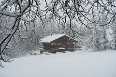 A lovely chalet in the snow...
