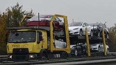 PL - Fenix Transport Renault Range D (BonsaiTruck) Tags: fenix renault range d cartransport autotransporter lkw lastwagen lastzug truck trucks lorry lorries camion caminhoes