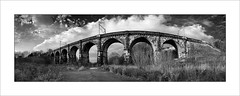 Sankey Viaduct (9 arches) (tkimages2011) Tags: railway sankey viaduct 9arches sthelens newtonlewillows merseyside outside outdoor mono monochrome bw arches brickwork architecture engineering