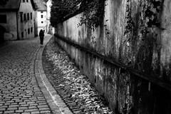 Always on the line (Leica M6) (stefankamert) Tags: analog analogue film line people blur blurry noir noiretblanc blackandwhite blackwhite street city cobblestones stefankamert leica m6 leicam6 summitar kodak trix lines tones highcontrast wall 122019