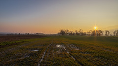 Derniers rayons de soleil de la journée (S. Torres) Tags: coucherdesoleil sunset campagne nature champs fields paysdegex france