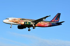 "OO-SNF Airbus A320-214 Brussels Airlines ""Tomorrowland"" livery (BRU/EBBR) (geoffrey.zdcki) Tags: bru ebbr airbus a320 a320214 landing spotting spotter nikon aviation brussels brusselsairport brusselsairlines oosnf tomorrowland"