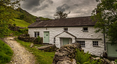 The ones I forgot about. (Ian Emerson (Thanks for all the comments and faves) Tags: lakedistrict cumbriaoutdoors cumbria outdoor remote hiking photography landscapephotography trees fells farmland cottage nationaltrust